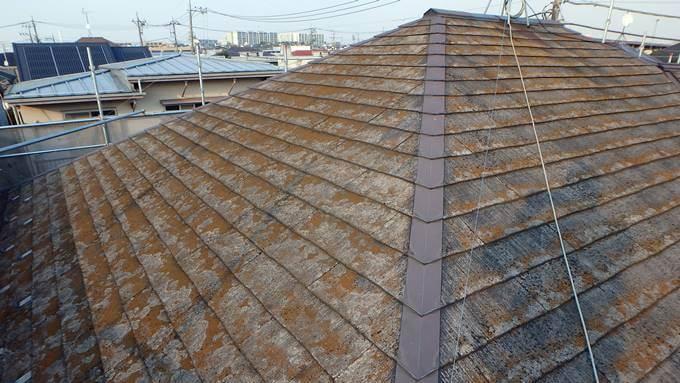 コケだらけのコロニアル屋根
