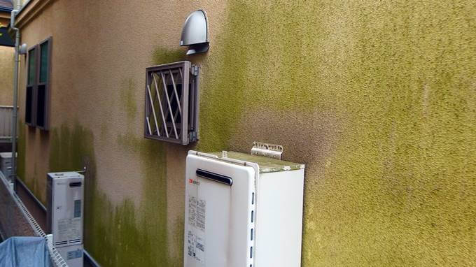 外壁塗装のコケ汚れ