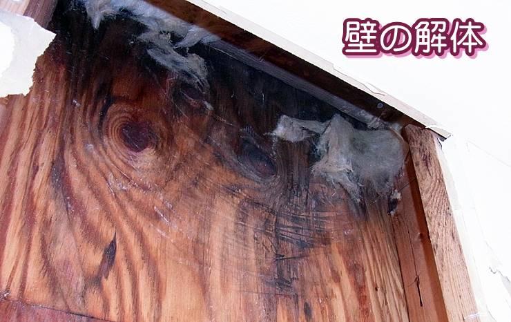 雨漏り後の室内壁の解体