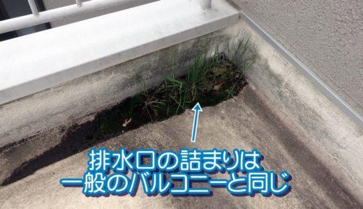排水口が土で詰まっているバルコニー