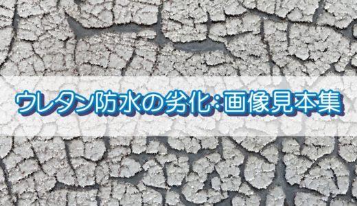 ウレタン防水の再防水が必要な劣化:画像見本集(随時更新)