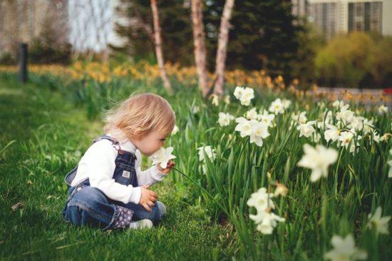 花の匂いを嗅ぐ子ども