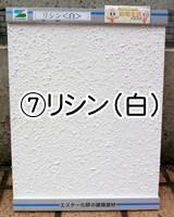 ⑦リシン(白)