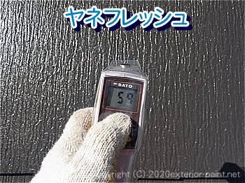 ヤネフレッシュ【59℃】