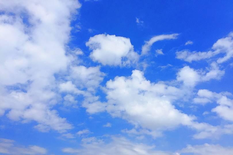 遮熱塗料【実証実験】 2012年8月23日