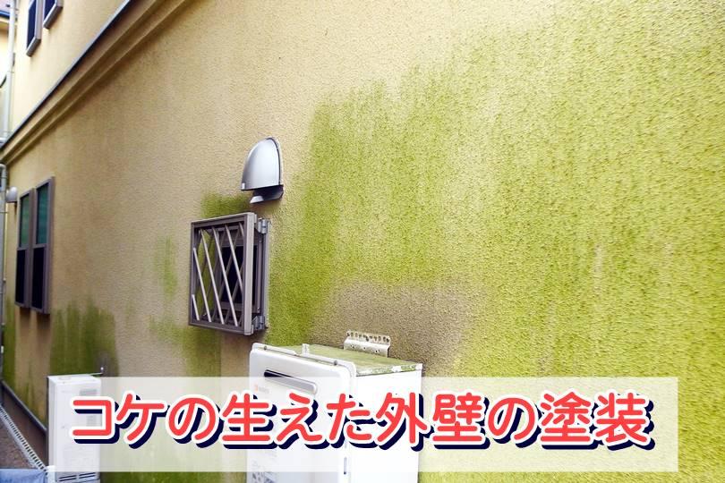 コケの生えた外壁の塗装