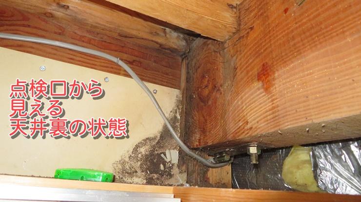 点検口から見える天井裏の状態